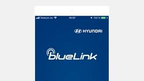 Bluelink-app